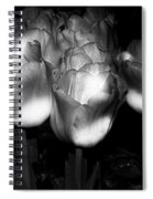 Black And White Tulips Spiral Notebook