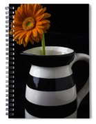 Black And White Vase With Daisy Spiral Notebook