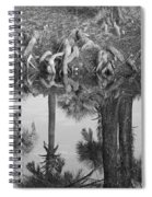 Black And White Water Reflections Spiral Notebook