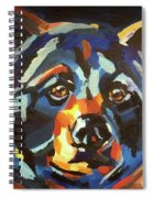 Black Bear - Black Night Spiral Notebook