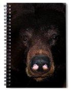 Black Bear Sniff Spiral Notebook