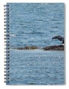 Black Bird Spiral Notebook