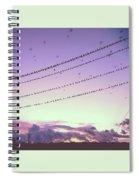 Black Birds Spiral Notebook
