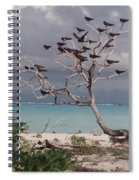 Black Birds Spiral Notebook