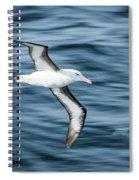 Black-browed Albatross Gliding Over Deep Blue Waves Spiral Notebook