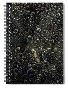 Black Bubbles Spiral Notebook