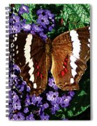 Black Butterfly On Heliotrope Spiral Notebook