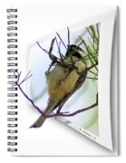 Black-capped Chick-a-dee Spiral Notebook