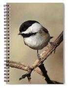 Black-capped Chickadee Portrait Spiral Notebook