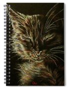 Black Cat Drawing Spiral Notebook