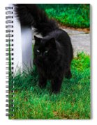 Black Cat Maine Spiral Notebook
