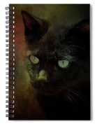 Black Cat Portrait Spiral Notebook