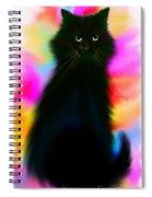 Black Cat Rainbow Sky Spiral Notebook