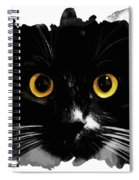 Black Cat, Yellow Eyes Spiral Notebook