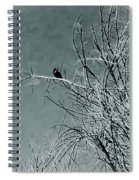 Black Crow White Snow Spiral Notebook