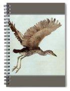Black Crowned Night Heron 3junenile Roger Bansemer Spiral Notebook