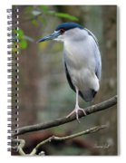 Black Crowned Night Heron IIi Spiral Notebook