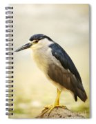 Black Crowned Night Heron Spiral Notebook