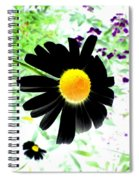 Black Daisy Spiral Notebook