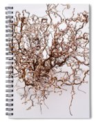 Black Death Virus Spiral Notebook