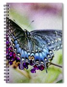Black Eastern Swallowtail Spiral Notebook