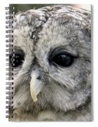 Black Eye Owl Spiral Notebook