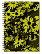 Black Eyed Susan's Spiral Notebook