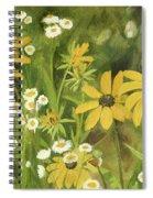 Black-eyed Susans In A Field Spiral Notebook