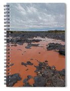 Black Falls Crossing Spiral Notebook