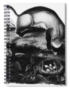 Black-footed Ferret Spiral Notebook