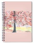 Black Gum Grove Spiral Notebook