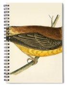 Black Headed Bunting Spiral Notebook