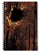 Black Hole Sun Spiral Notebook