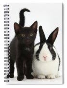 Black Kitten And Dutch Rabbit Spiral Notebook