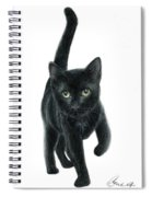Black Kitten Spiral Notebook