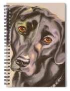 Black Lab Aint No Cure For Love Spiral Notebook