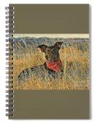 Black Lab In Grassy Field Spiral Notebook