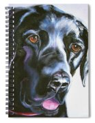 Black Lab No Ordinary Love Spiral Notebook