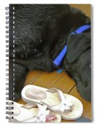 Black Lab Resting Spiral Notebook
