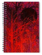 Black Moon Spiral Notebook