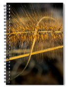 Black Pennisetum In Setting Sun Spiral Notebook