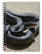 Black Racer Spiral Notebook