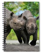 Black Rhinoceroses Spiral Notebook