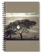Black Silhouette Tree Spiral Notebook
