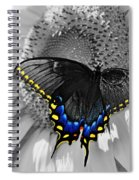 Black Swallowtail And Sunflower Color Splash Spiral Notebook