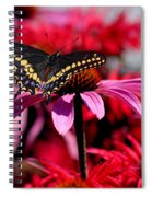 Black Swallowtail Butterfly With Coneflowers And Bee Balm Spiral Notebook