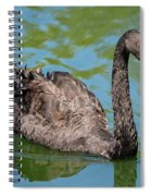Black Swan Spiral Notebook