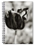 Black Tulip Spiral Notebook