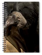 Black Vulture 2 Spiral Notebook