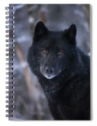 Black Wolf Portrait Spiral Notebook